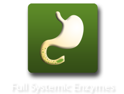 Full Systemic Enzymes